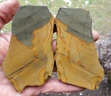 (2) Sweet - Wild Horse Canyon Picture Jasper Slabs 158 Gr. - 3230
