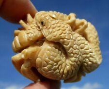 Schlange geschnitzt aus einer Tagua - Nuss !