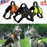 No Pull Adjustable Dog Vest Harness Quality Oxford For Small/Medium/Large Pet