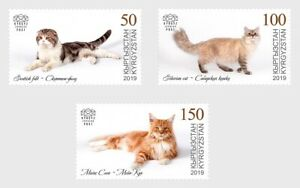 2019    KYRGYZSTAN  - DOMESTIC CATS  - UNMOUNTED MINT