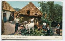 Farm Family Madeira Portugal 1910c postcard