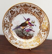 Early Derby Cabinet Plate c1800 Bright Colour Birds Painted by Richard Dodson
