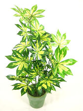 Potted Variegated Artificial Silk Fatsia Japonica Plant ~ artificial plant