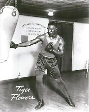 TIGER FLOWERS 8X10 PHOTO BOXING PICTURE