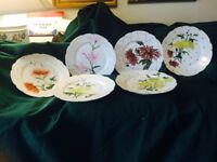 Antique  Plates (Haviland Limoge) designed with Flowers and Gold (Made 1882)