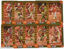 2015 Teamcoach GOLD COAST Gold Team Set