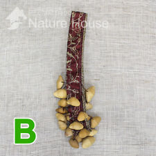 Natural Seed Rattle Shaker Maracas real Native Handwork Percussion Instrument