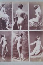 CALAVAS ETUDE DE NUS  TIRAGE ALBUMINE ALBUMEN VINTAGE PRINT 1880 PEINTURE ref4