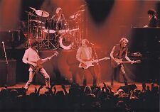 DIRE STRAITS PHOTO ENTIRE BAND1982 UNIQUE UNRELEASED IMAGE HUGE12INCH RARITY GEM