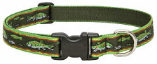 Lupine 1 Adjustable Dog Collar 16-28 Brook Trout