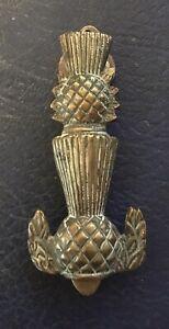 Vintage Brass Thistle Door Knocker