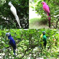 4PCS Lifelike Bird Ornament Figurine 35cm Parrot Model Statue Lawn Sculpture
