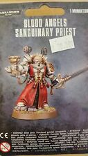 WH40K Space Marine BLOOD ANGELS SANGUINARY PRIEST Apothecary With Chalice