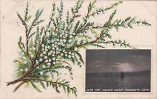 Cromarty Firth Sunset Vignette, Nr INVERGORDON, Ross-shire