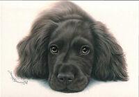 Irina Garmashova ' Dog '   modern Rare new postcard