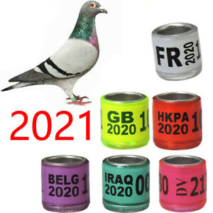 8mm 2021 Bird Ring For Chicks Leg Band Tool Pigeon Identify Mixed Color Label