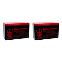 ep1234w 12v 8ah SLA Replacement Battery (2) Pack By Neptune Power