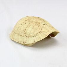 Resin Reptile Cave Hide Turtle Shell Rest Habitat Ornament for Spiders Chameleon