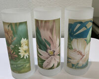 """Tommy Bahama 3 Frosted Floral  Glasses Tumblers Cocktail Drinking Bar 6.5"""" Tall"""