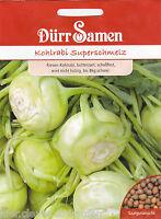Riesen Kohlrabi Superschmelz Brassica oleracea bis 8 kg schwer 120 Dürr Samen