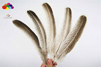 Natural Goose Feather 10-12 inch/25-30 cm 100pcs carnival Diy costume headress