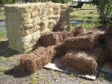 Louisiana Longleaf Pine Straw Mulch Needles 15lb Bale Vegetable Flower Gardens