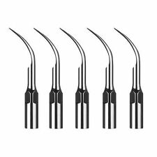 5 pcs EMS Woodpecker Type Dental Ultrasonic Scaler Tip Scaling G2 in USA