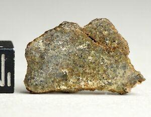 Meteorite NWA 10505 - Achondrite Diogenite protogranular olivine bearing 2.59g