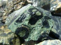 KAMBAMBA CROCODILE JASPER Rough Rock - 1 Lb Lot