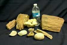 Lqqk - Great lot of over 15 Pounds of Petrified Wood Specimens and more.