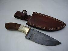 "Pioneer Damascus Steel Hunting Knife Brass Guard 10.5"" Pt-612 ( Bogo Sale )"