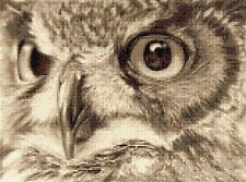 """Chouette hulotte Counted Cross Stitch Kit 11.5"""" X 8.5"""" Animaux/Insectes FAUNE OISEAUX"""