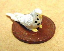 1:12 Scale Polymer Clay White Budgerigar Yellow Feet Tumdee Dolls House Bird Q