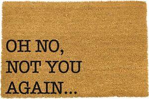 Not You Again Coir Doormat Indoor Outdoor