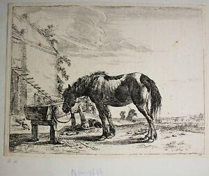 Etching Dirck Stoop Um 1651 Horse An Trough With Shepherd