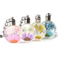 Sweet Small Fresh Dried Flower Keychain Round Crystal Glass Trendy useful
