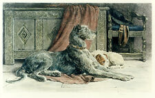 DEERHOUND IRISH WOLFHOUND JACK RUSSELL TERRIER DOG ART ENGRAVING Herbert Dicksee