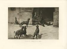 ANTIQUE BISKRA ALGERIA ALGERIAN STREET MUSIC COSTUME TRIBES MAN WILD DOGS PRINT