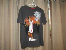 NIKE LEBRON JAMES mens large painting shirt gray logo dri fit excellent