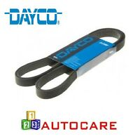 Dayco Drive Belt For BMW 3 Series E90 91 92 93 Alfa Romeo 147 156 GT