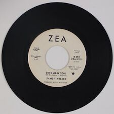 "DAVID T. WALKER: Love Vibrations ZEA US Soul Funk Promo 7"" 45 MP3"