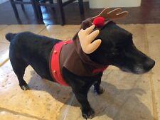 Christmas Reindeer Small Dog Coat Brown Velour With Felt Trim Velcro & Buckle