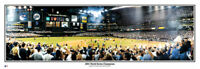 Arizona Diamondbacks 2001 World Series Champions Panoramic Poster #2017