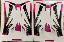 RTR Cheetah Aeolos chassis decals-Pink/Checker