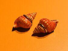Vintage 14k Gold Sterling Silver Orange Shell Earrings