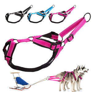 Adjustable Sled Pro Dog Harness Strong Large Breed Pulling Working Training Vest