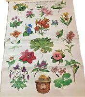 Vintage 1988 Smokey Bear flowers poster educational 20x30 pick a reason