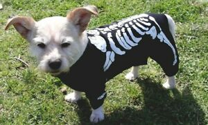 Skeleton Halloween dog costume shirt SMALL 25cm dogs toy poodle size - New