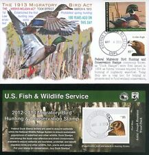 """COVERSCAPE computer designed 100th anniversary """"Migratory Bird Act"""" Duck cover"""