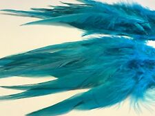 15 Aqua Blue Rooster Coque Feathers 15-20cm DIY Craft Millinery Dream Catcher